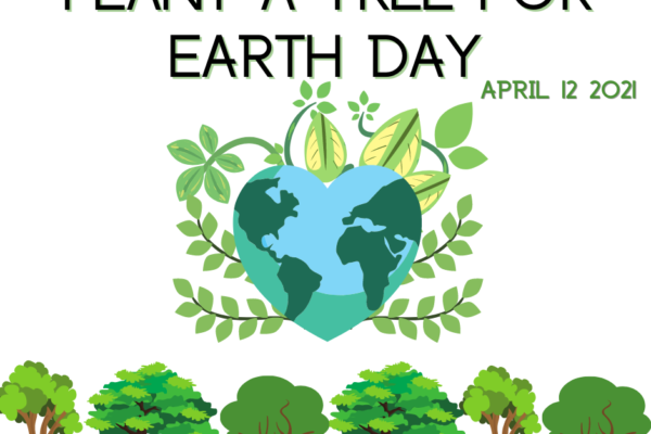 Free Trees to Plant for Earth Day